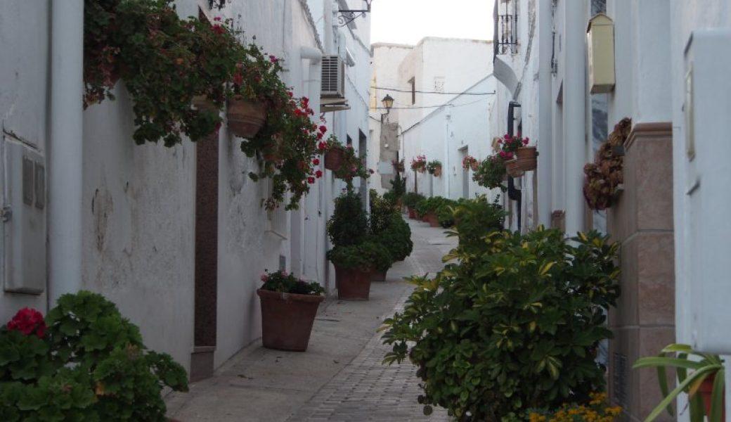 Almería '13